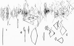 Riflessi e geometrie palustri