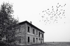 """Viaggi in pianura - spunti presi  dal libro  """"Verso la foce"""" di Gianni Celati"""