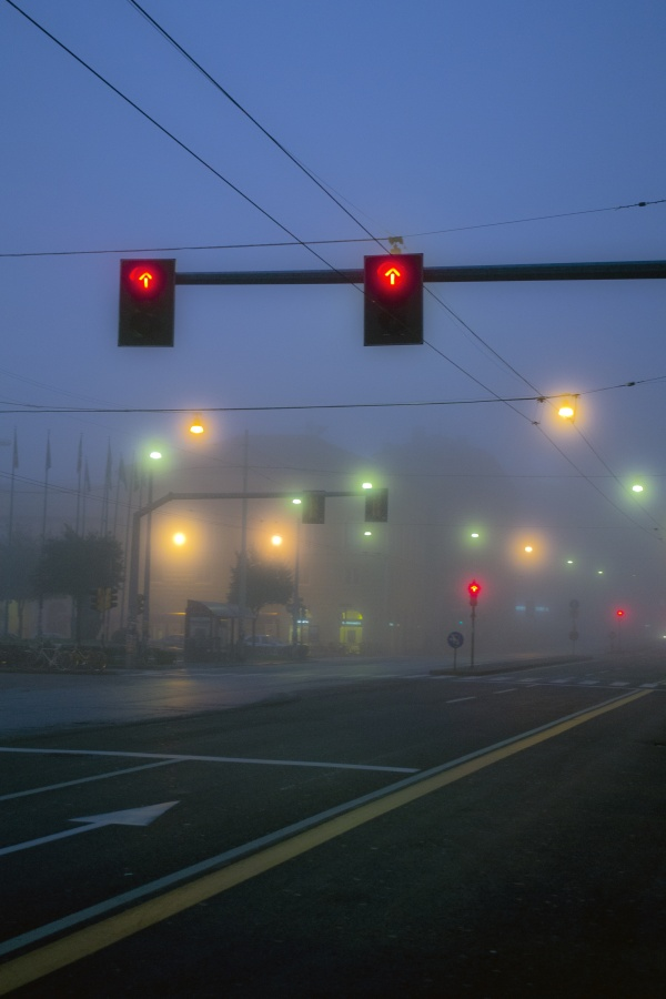 Lights and fog