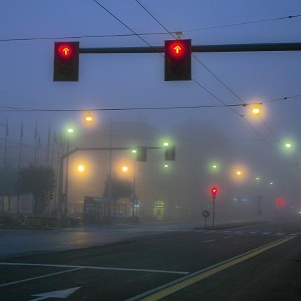 Lights and fog