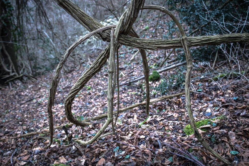 (S)-lègami-legàmi/Tie, untie