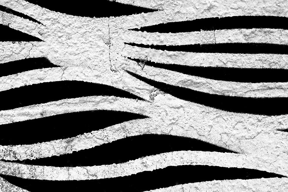 Rielaborazioni in bianco e nero