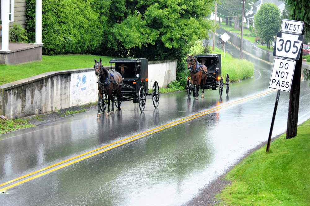 Amish, Pennsylvania  2018 - 2019